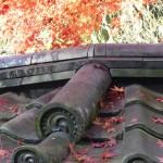 leaves-roof-kamakura-musique21-huillet