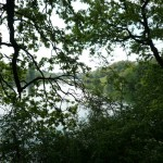 forest-lake-musique21-huillet