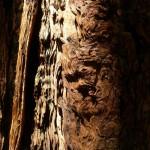 sequoia-california-musique21-huillet