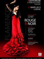 rouge et noir ballet flamenco thierry huillet